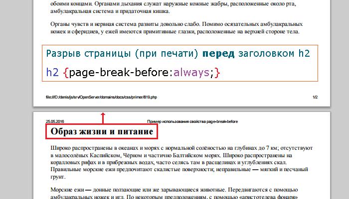 Свойство page-break-before | CSS справочник